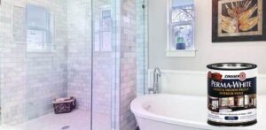 Best Bathroom Paint To Prevent Mold