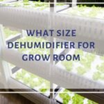 What Size Dehumidifier For Grow Room